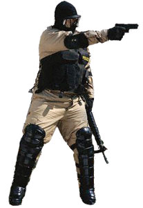 law enforcement tactical training edge weapon defense compliance and control